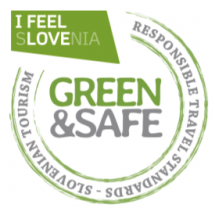 logo green safe